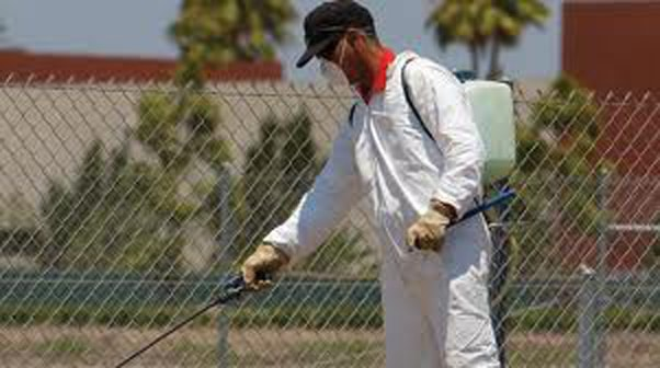 pest spraying services cpae cod area