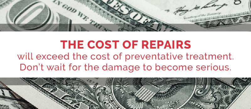 cost of termite repair