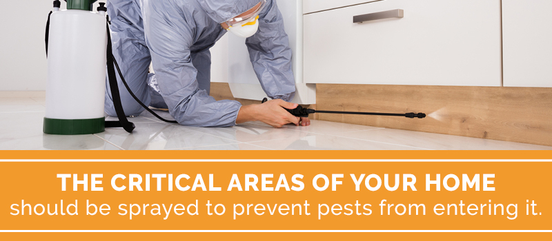 spray your home to avoid pests