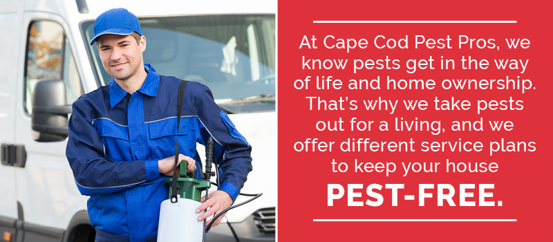 hire Cape cod Pest Pros