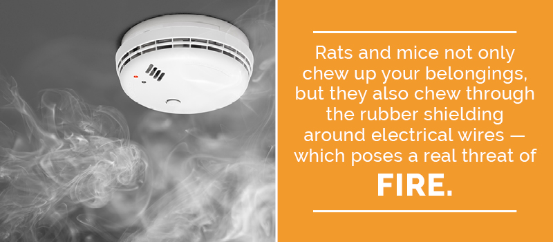 how rats can cause fires
