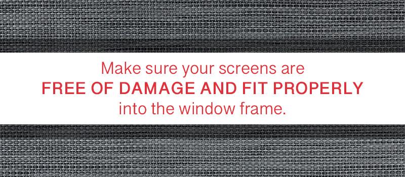 cracks-tears-in-screens