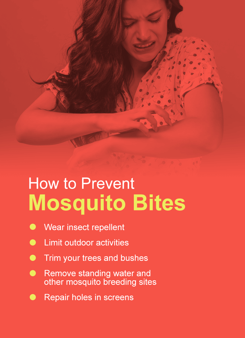 how to prevent mosquito bites