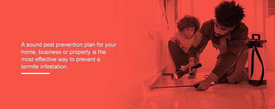 Have a Pest Prevention Plan